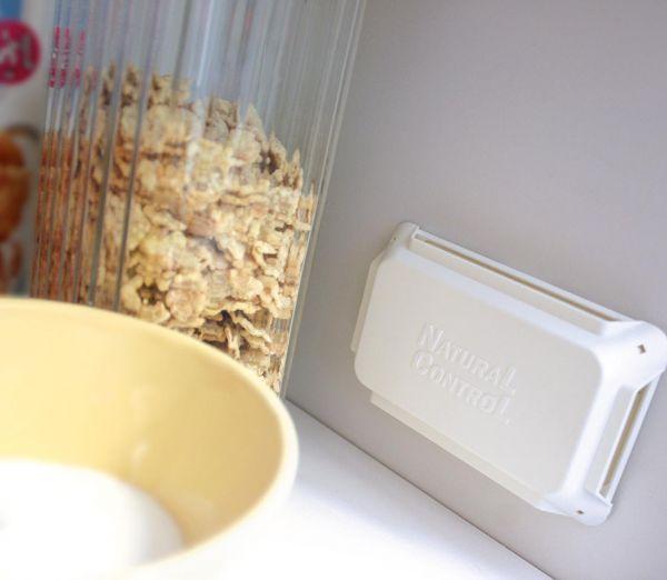 Lebensmittel Motten Falle Naturalcontrol 2er Pack Insekten